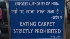 eating carpet